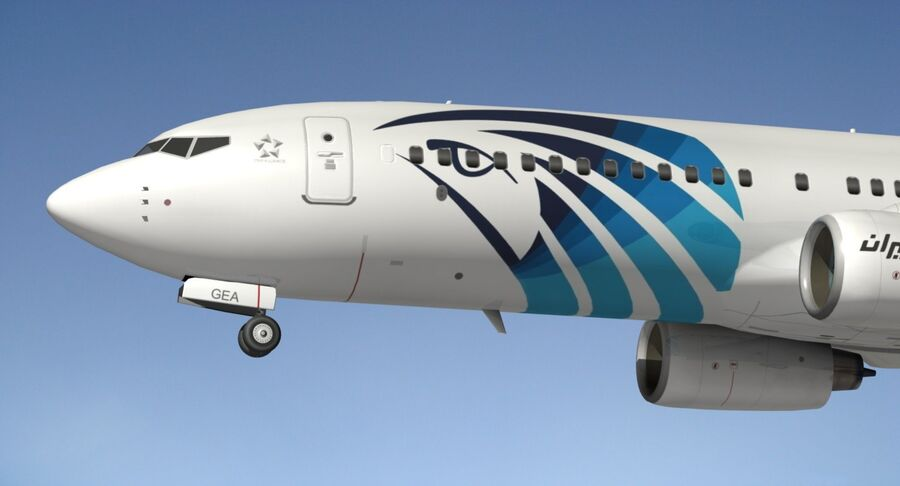 Boeing 737800 EgyptAir royalty-free 3d model - Preview no. 4