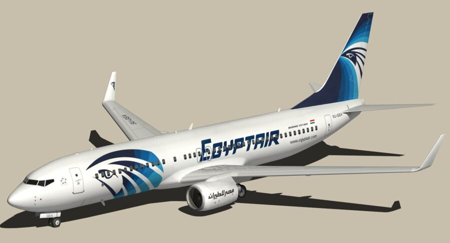 Boeing 737800 EgyptAir royalty-free modelo 3d - Preview no. 3