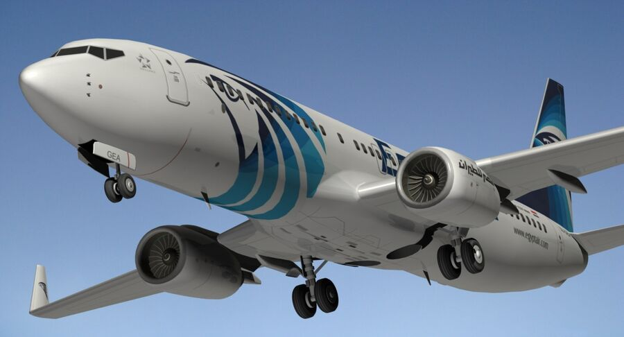 Boeing 737800 EgyptAir royalty-free 3d model - Preview no. 7