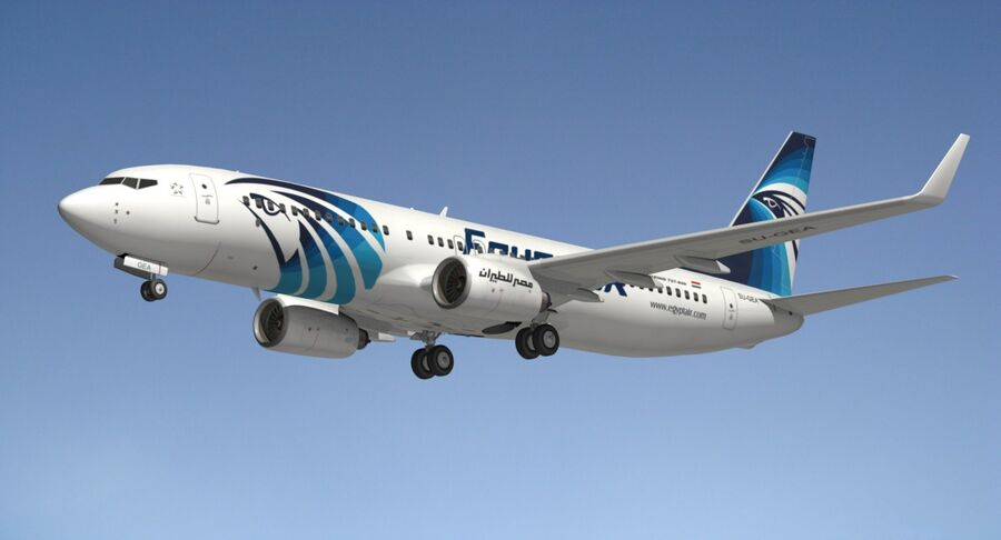 Boeing 737800 EgyptAir royalty-free 3d model - Preview no. 11