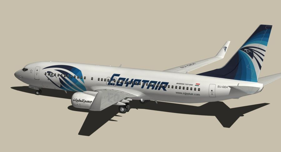 Boeing 737800 EgyptAir royalty-free modelo 3d - Preview no. 10