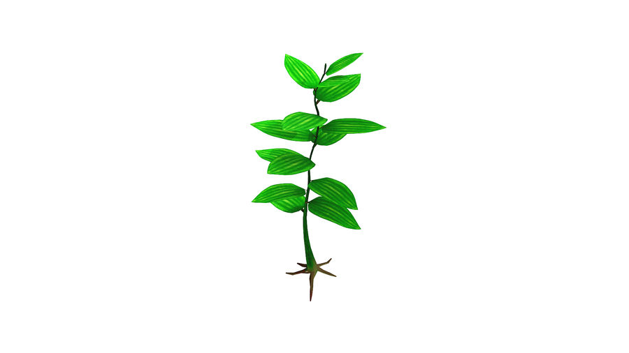 kleine Pflanze royalty-free 3d model - Preview no. 1