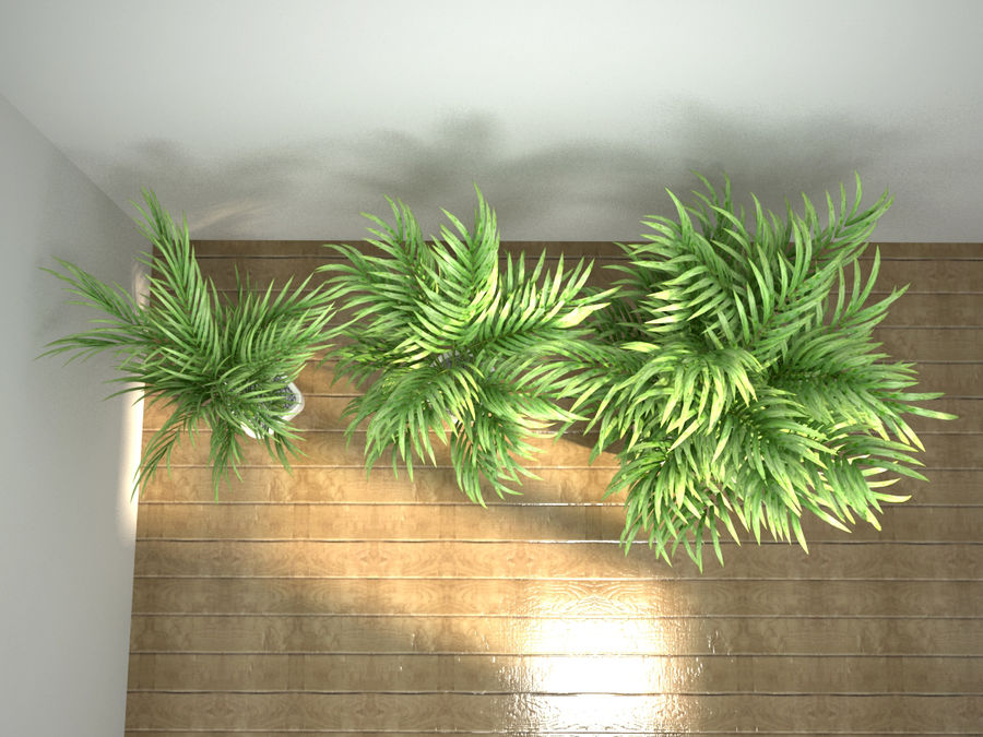 palm set royalty-free 3d model - Preview no. 7