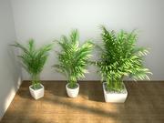 palm set 3d model