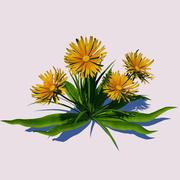 Цветок одуванчика 3d model