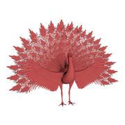 Tavuskuşu taban örgü 3d model