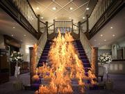 Yangın ortaya 3d model
