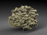 Drzewo z lasu 3d model