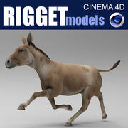 Donkey_Rigget 3d model