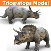 Triceratops 3D Models 3d model