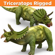 Triceratops zielony Rigged 3d model