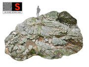 Jungle Rock Ground 16K 3d model