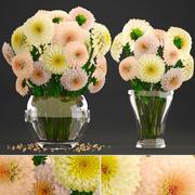 大丽花的花束 3d model