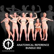 Pacchetto anatomico di riferimento 002 3d model