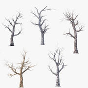Low Poly Dead Tree Pack 3d model