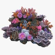 Коралловый риф № 02 3d model