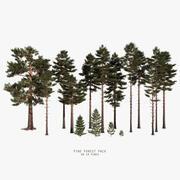 pacote de floresta de pinheiros 3d model