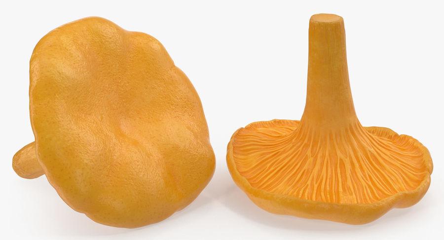 Goldener wilder Pilz-Pfifferling 3D Modelle royalty-free 3d model - Preview no. 4
