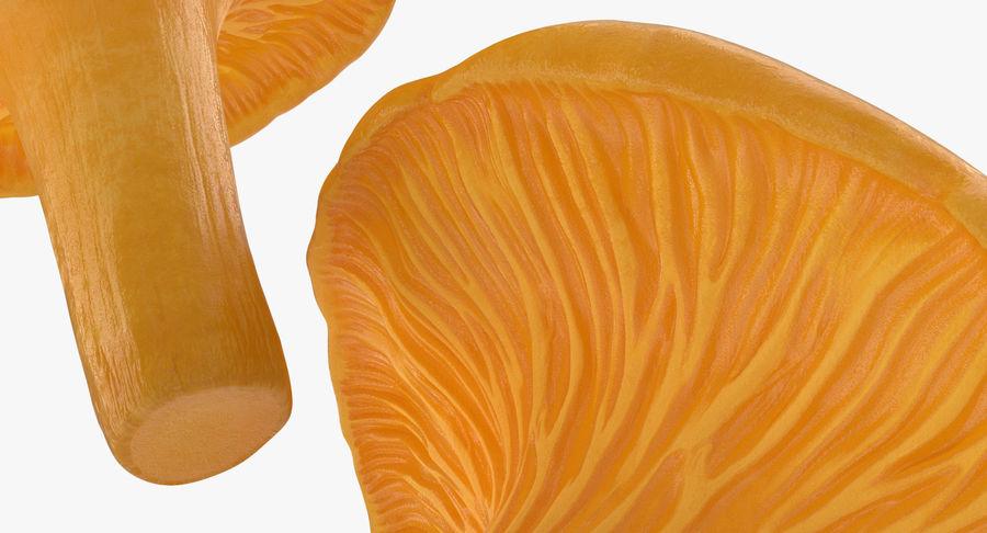 Goldener wilder Pilz-Pfifferling 3D Modelle royalty-free 3d model - Preview no. 6