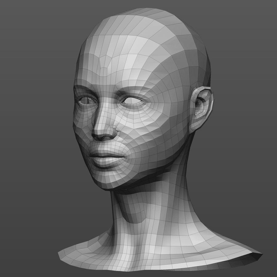 Basmaskar han / kvinnlig huvud royalty-free 3d model - Preview no. 5