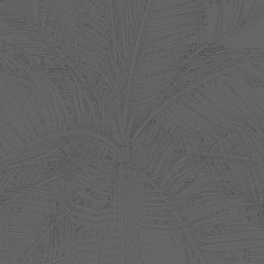 Beach Palm Tree royalty-free 3d model - Preview no. 4