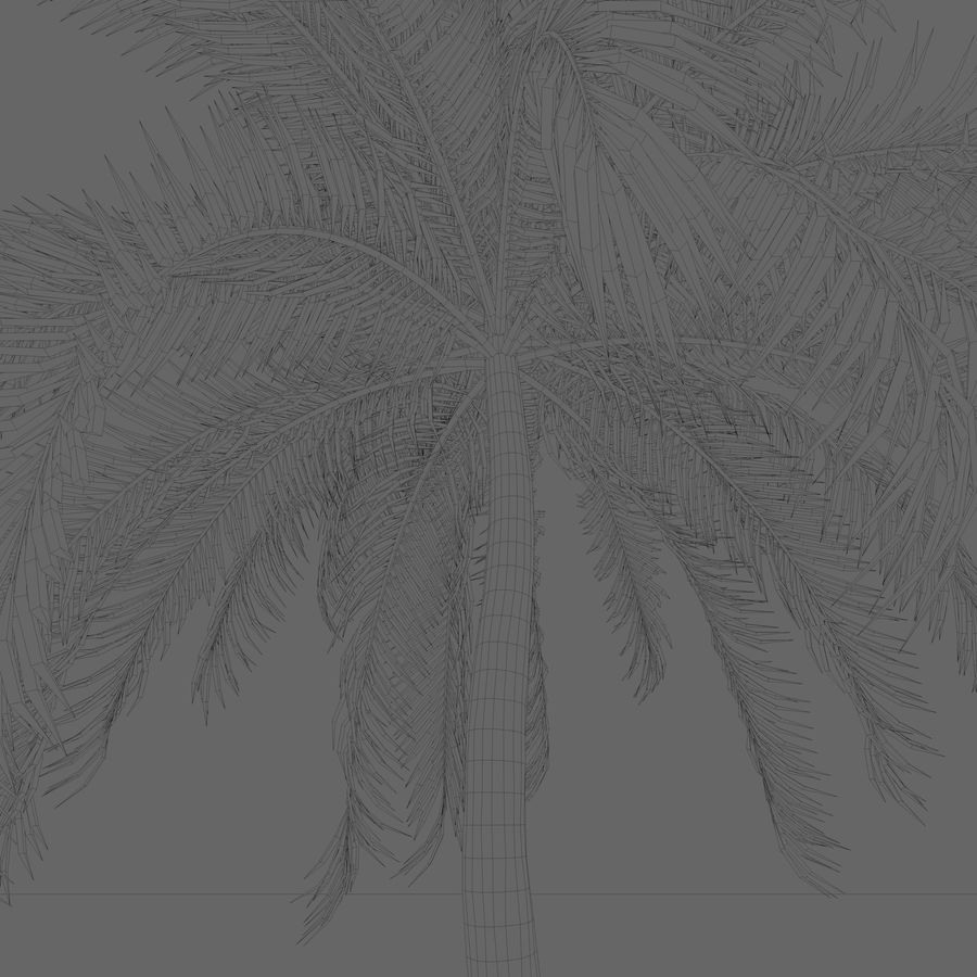 Beach Palm Tree royalty-free 3d model - Preview no. 6