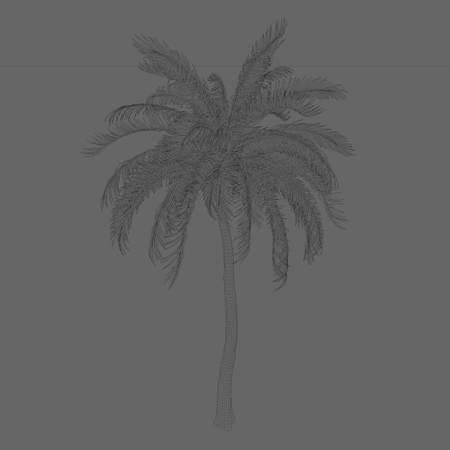Beach Palm Tree royalty-free 3d model - Preview no. 2