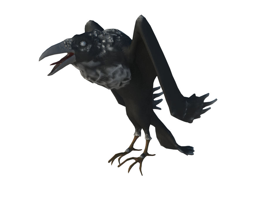 Crow or Raven or Corbie royalty-free 3d model - Preview no. 2