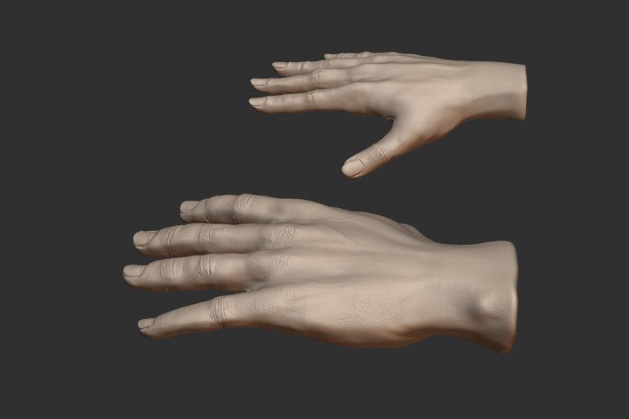 Realistiska händer royalty-free 3d model - Preview no. 3