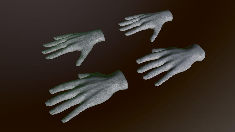 Realistiska händer royalty-free 3d model - Preview no. 7