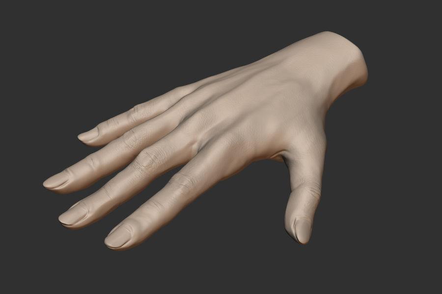Realistiska händer royalty-free 3d model - Preview no. 5