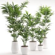 Houseplant 18 3d model