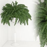 Planta de casa 21 3d model