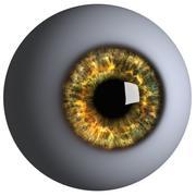 逼真的人类卡通眼睛 3d model