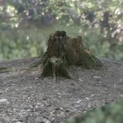 Ceppo basato su scansione 3d model