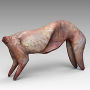 Vücut Tavşan 3d model