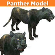 Realistic Panther 3D Models game ready 3d model