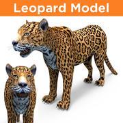 gioco di modelli 3D leopardo pronto 3d model