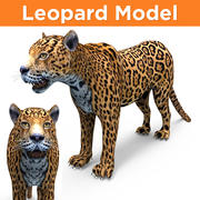 leopard 3D Models game ready 3d model