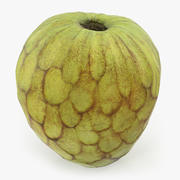 Cherimoya or Annona Cherimola Fruit 3D Model 3d model