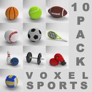 ボクセルスポーツ10パック 3d model