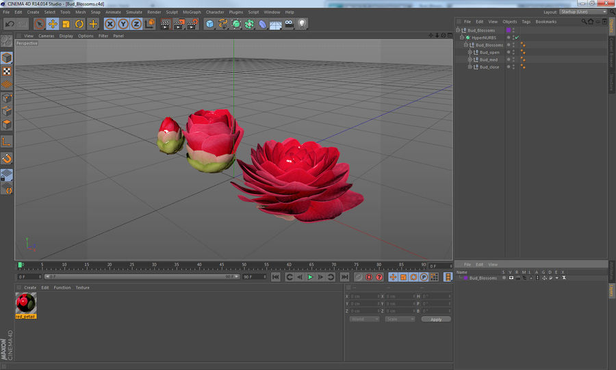 Evolução da flor do botão royalty-free 3d model - Preview no. 12