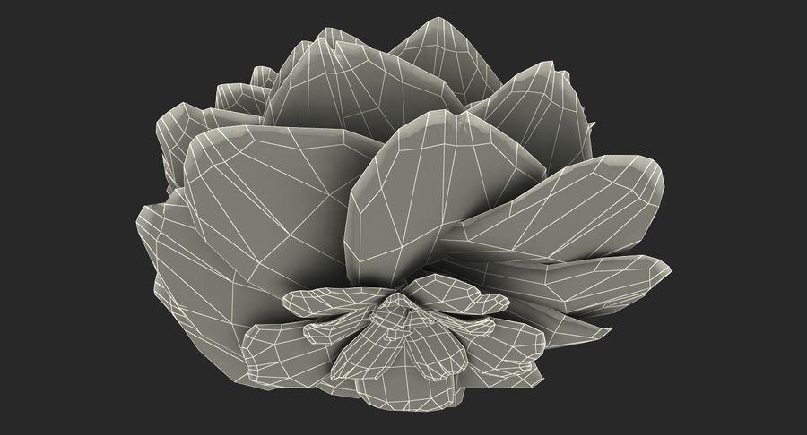 Bud Blossom Evolution royalty-free 3d model - Preview no. 15