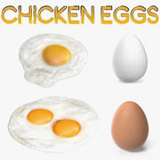Chicken Eggs 3D Models Collection 3d model