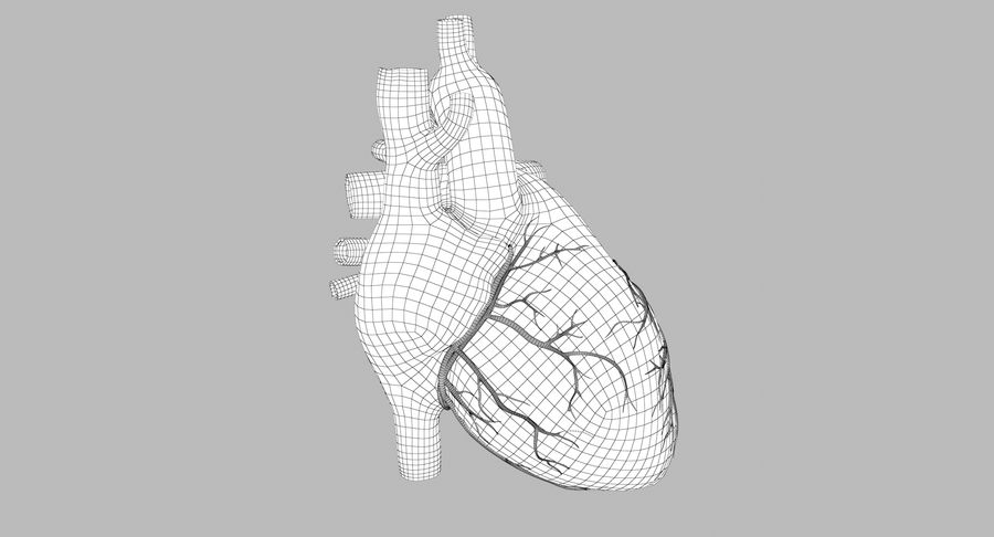 Human Heart Rigged Animated royalty-free 3d model - Preview no. 9