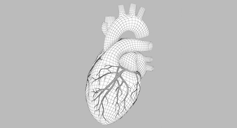 Human Heart Rigged Animated royalty-free 3d model - Preview no. 7