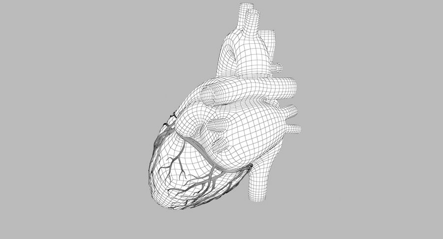 Human Heart Rigged Animated royalty-free 3d model - Preview no. 11