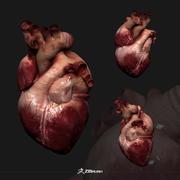 Gerçekçi kalp 3d model