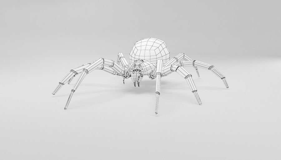 Wolf Spider royalty-free 3d model - Preview no. 16
