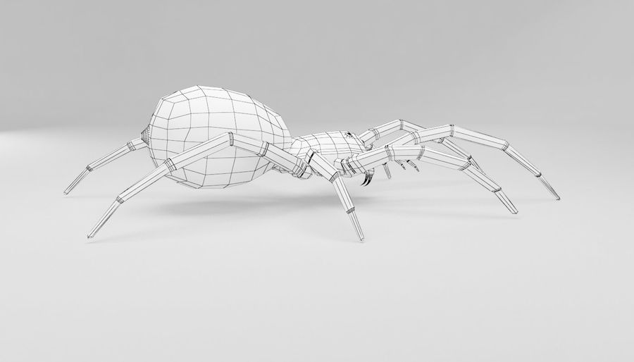 Wolf Spider royalty-free 3d model - Preview no. 14
